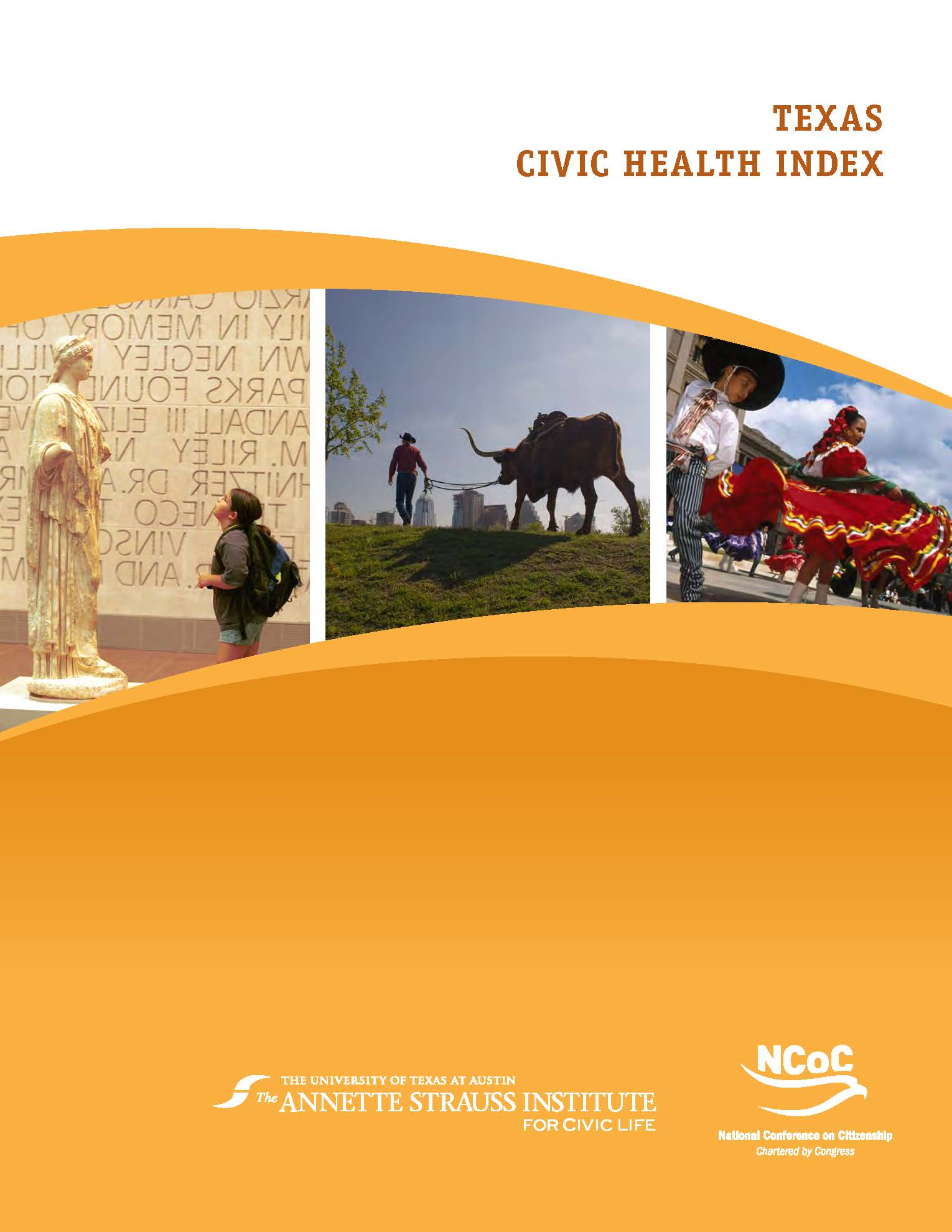 Civic Health Report